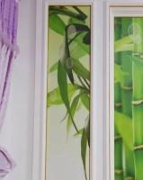 不用玻璃胶 艺术美边线让墙纸更美